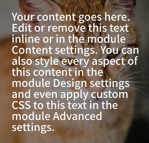 Diviの画像の上にマウスを持ってきてテキストを表示させる手順、テキストモジュールを直す