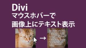 Divi-画像にマウスホバーでテキスト表示させる方法2