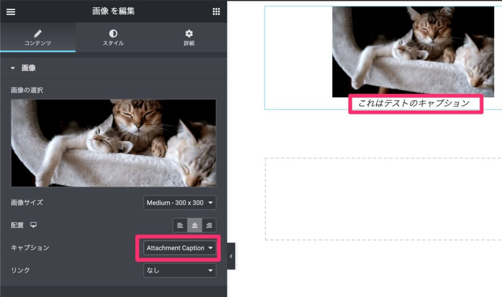 Elementor画像ウィジェットのattachment captionの例