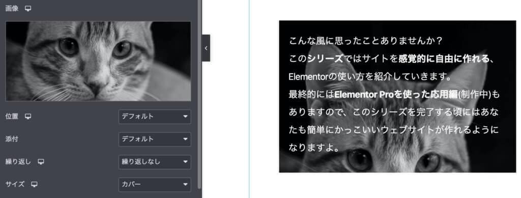 Elementorの背景画像をカバーにする