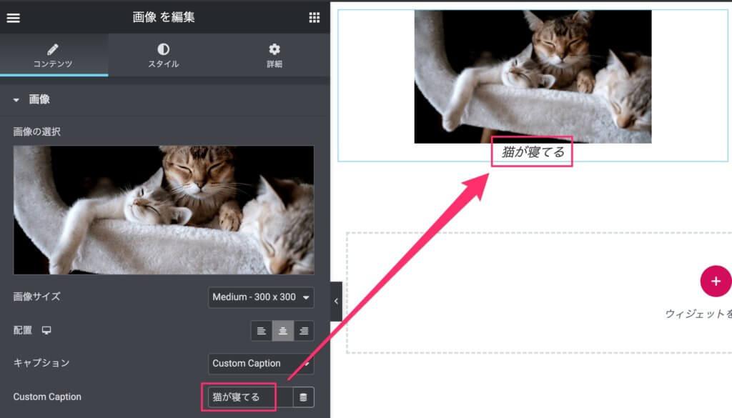 Elementorの画像ウィジェットでカスタムキャプションを設定
