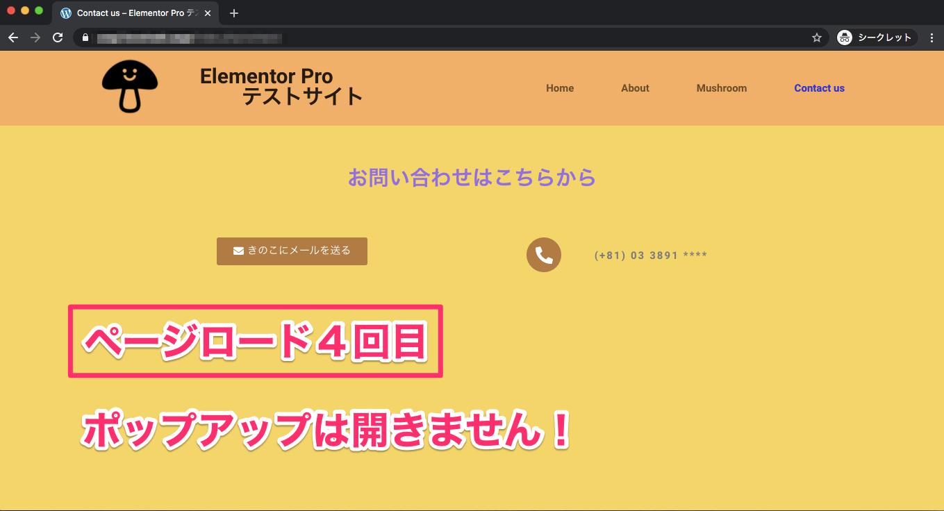 ページロード4回目の表示画面(Contact usページ)・ポップアップが表示されない
