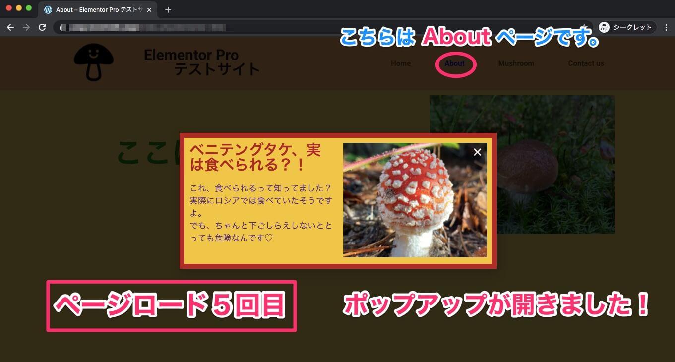 ページロード3回目以降にAboutページに行った時の表示画面・ポップアップが表示される