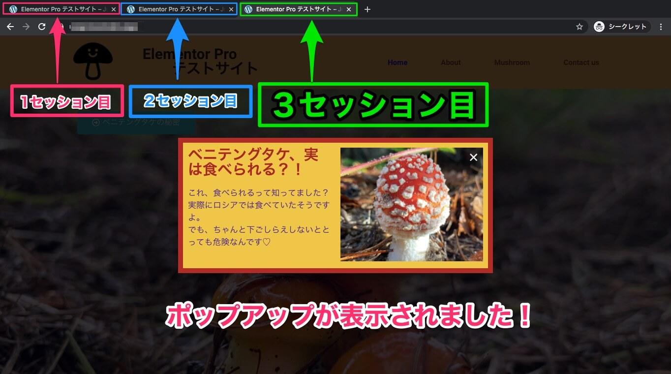セッション3回目の表示画面・ポップアップが表示される