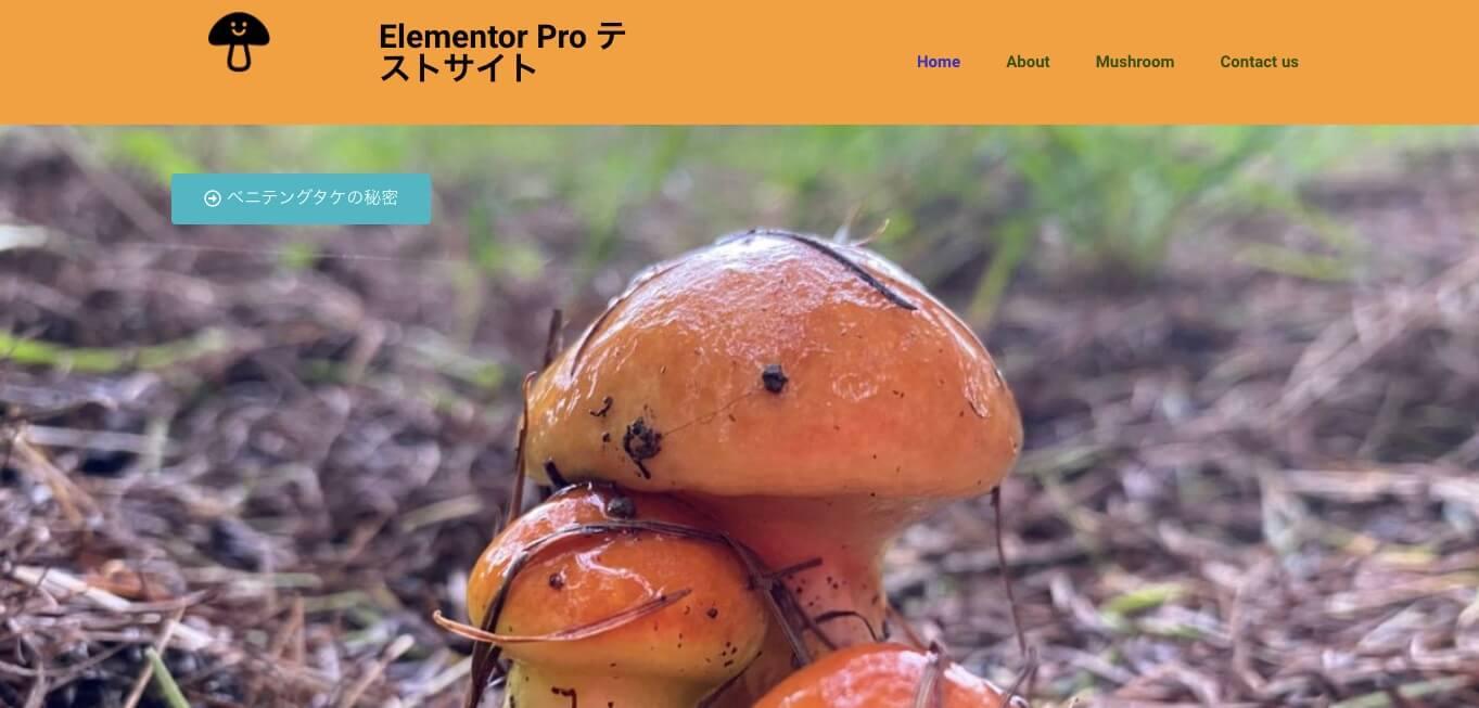 ホームページ表示画面
