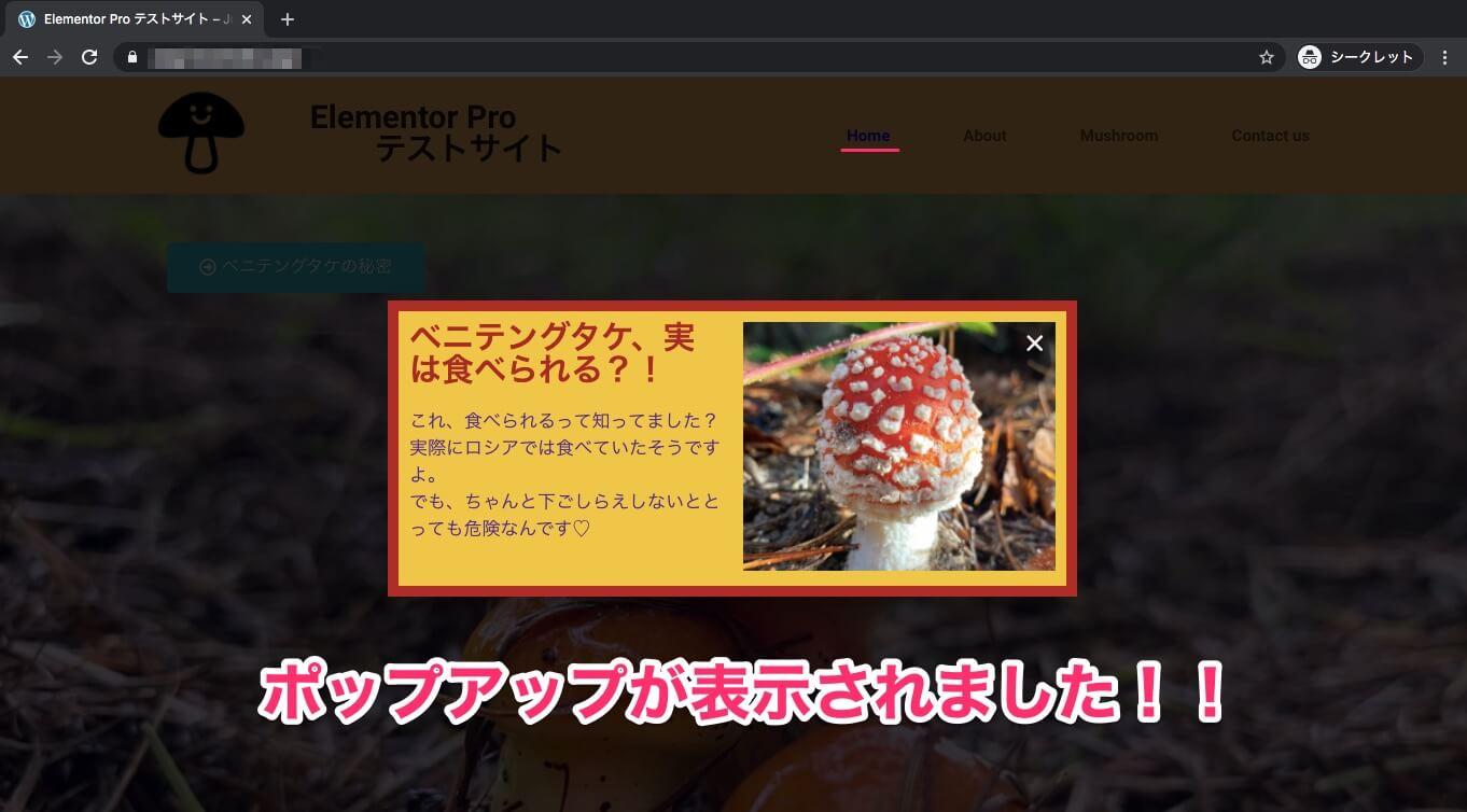 Homeページの表示画面・ポップアップは表示される