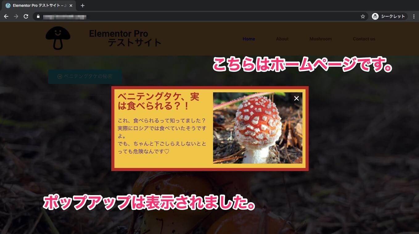 非表示:Aboutページに設定した時のホームページの表示画面