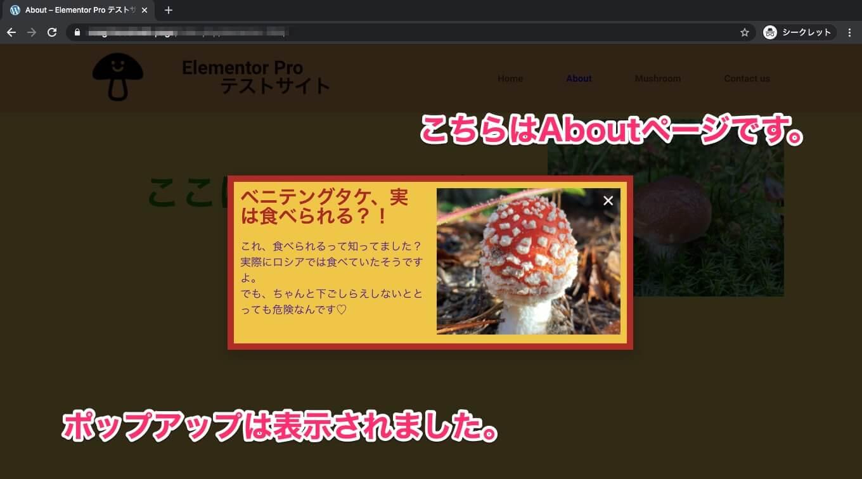 MushroomページからAboutページに来た時の表示画面