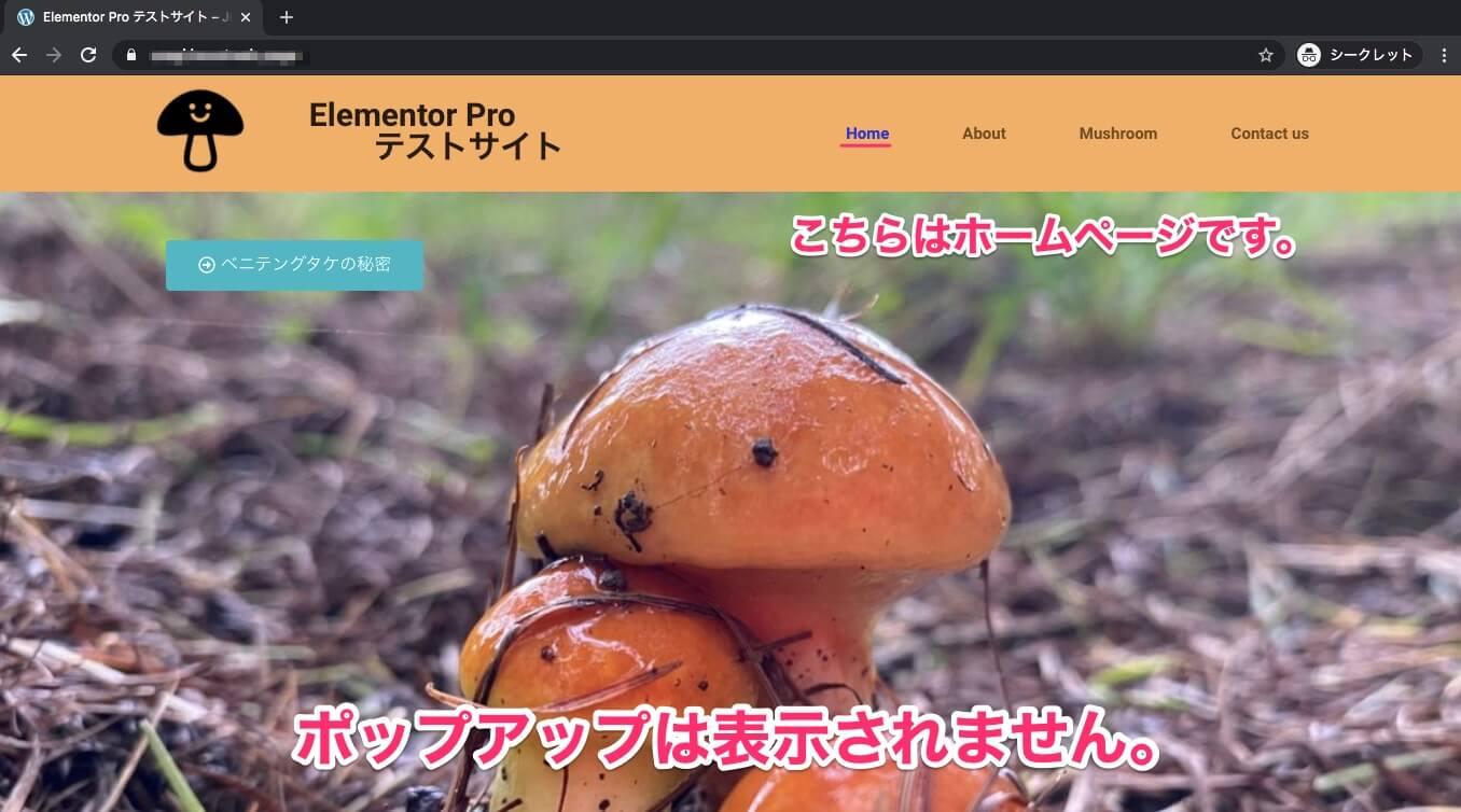 AboutページからHomeページに来た時の表示画面