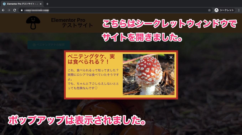 All Usersを選択しシークレットウィンドウでサイトを開いた時の表示画面