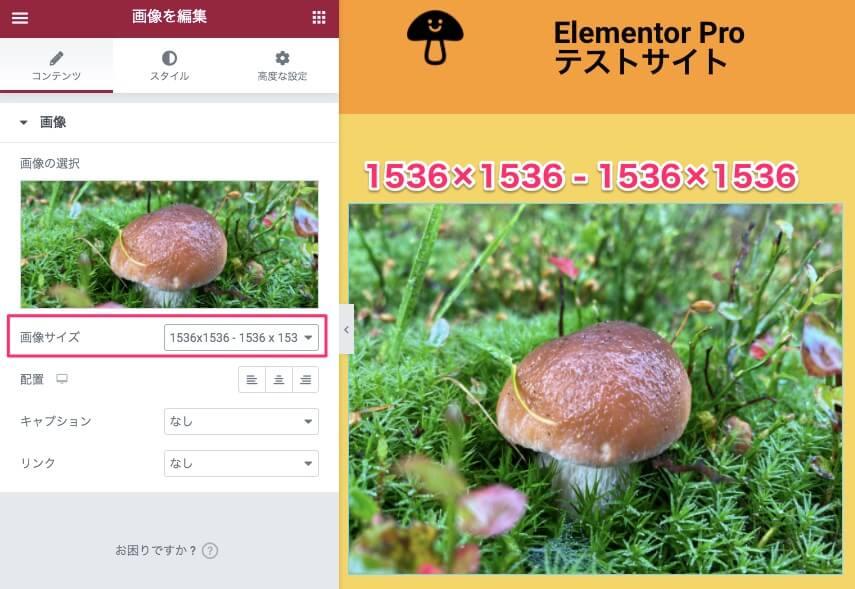 画像サイズを1536×1536に設定した時の表示画面