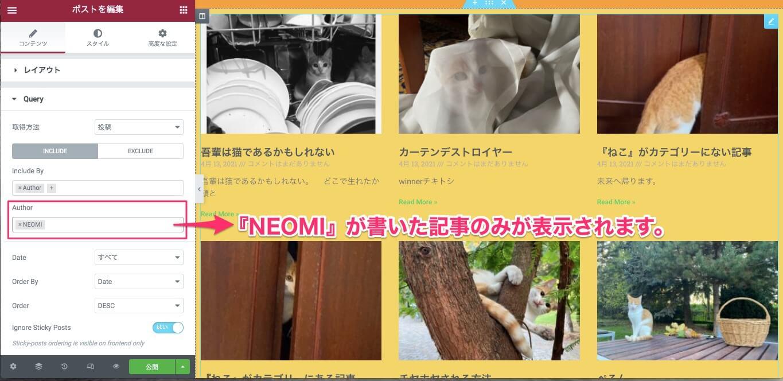 Authorで『NEOMI』を選択した時の表示画面
