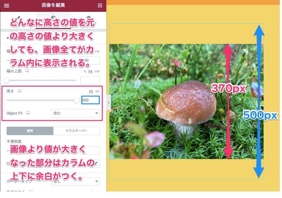 Object Fit:含む・高さを500PX(最大幅)にした時の表示画面
