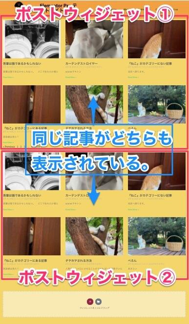 ページにポストウィジェットが2つあり、どちらもAvoid Duplicatesを『いいえ』にしている時のサイト表示画面