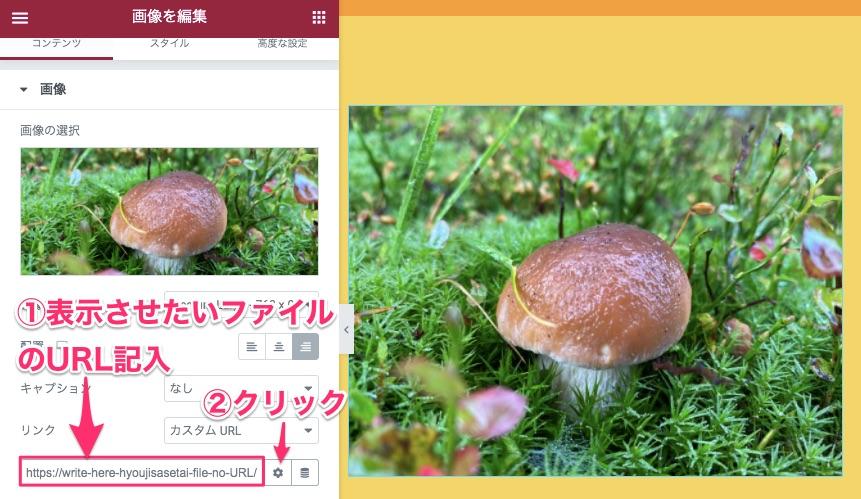 新しいタブでファイル形式の画像を表示させる方法