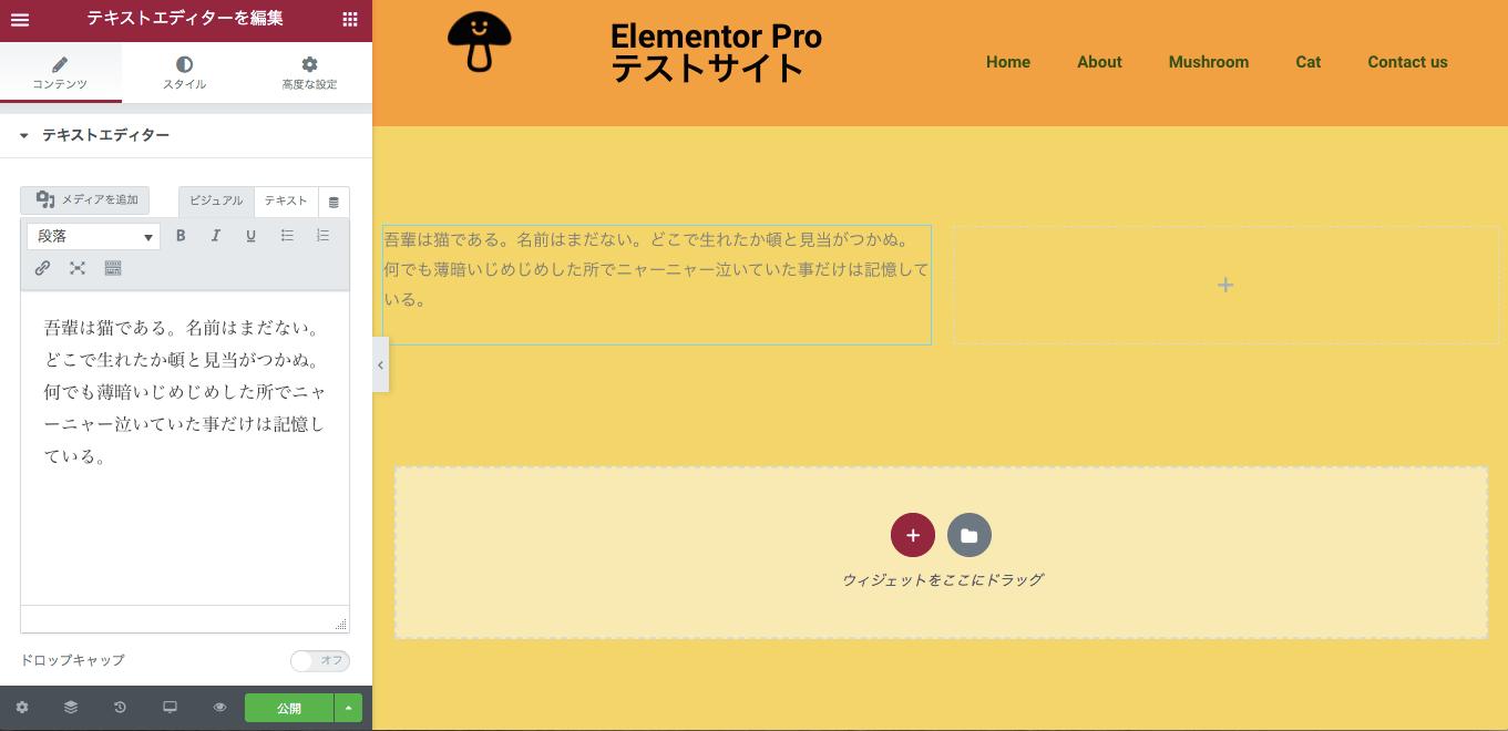 テキストエディターウィジェット挿入後の表示画面