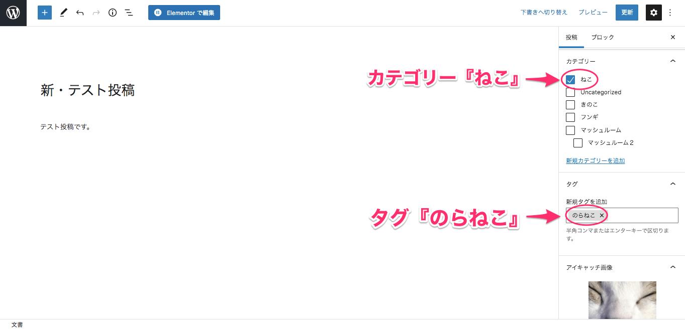 新・テスト投稿の記事/カテゴリー:ねこ/タグ:のらねこ