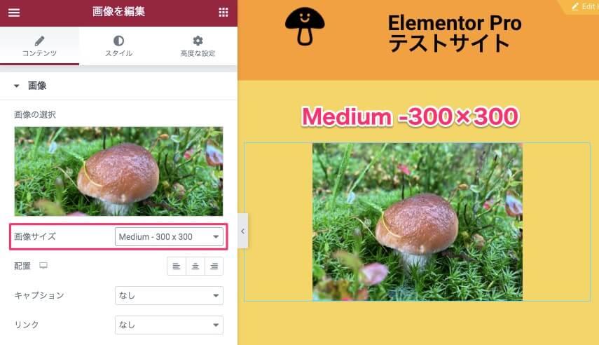 画像サイズをMedium-300×300に設定した時の表示画面