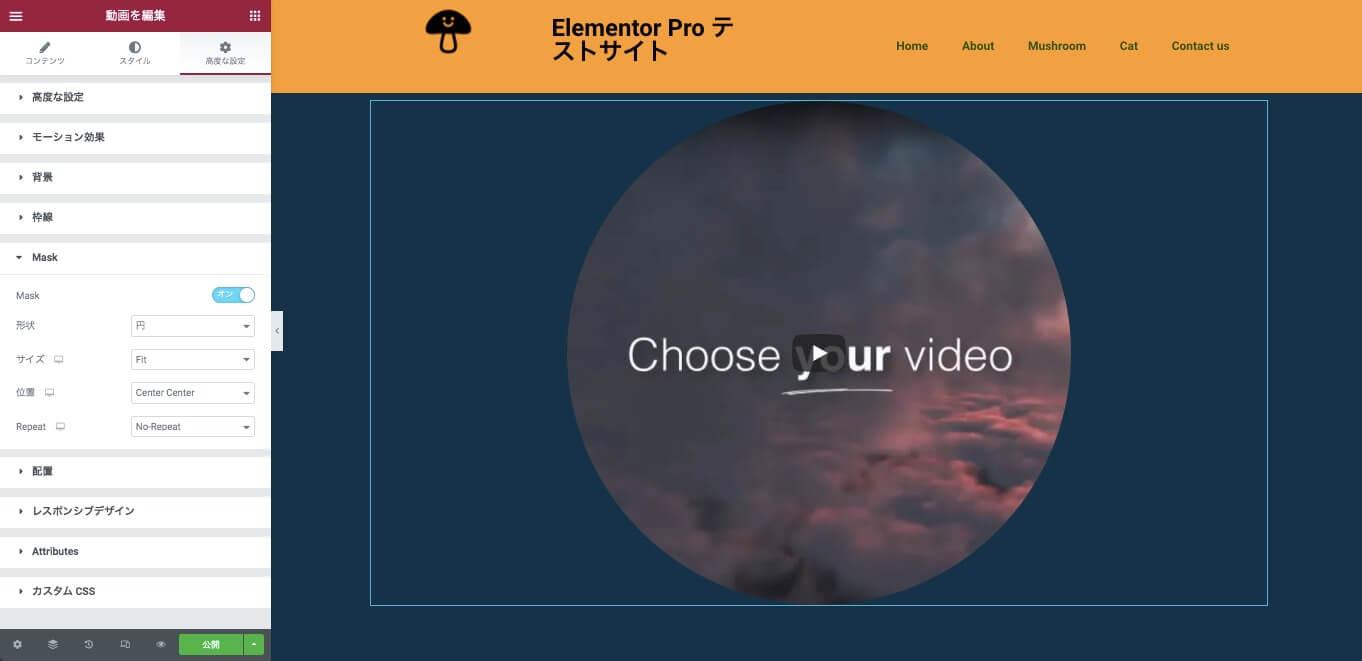 動画ウィジェットのMaskをオンにした後の表示画面