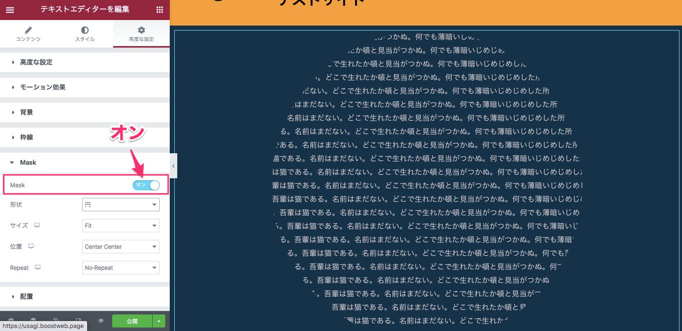 テキストエディターウィジェットのMaskをオンにした後の表示画面