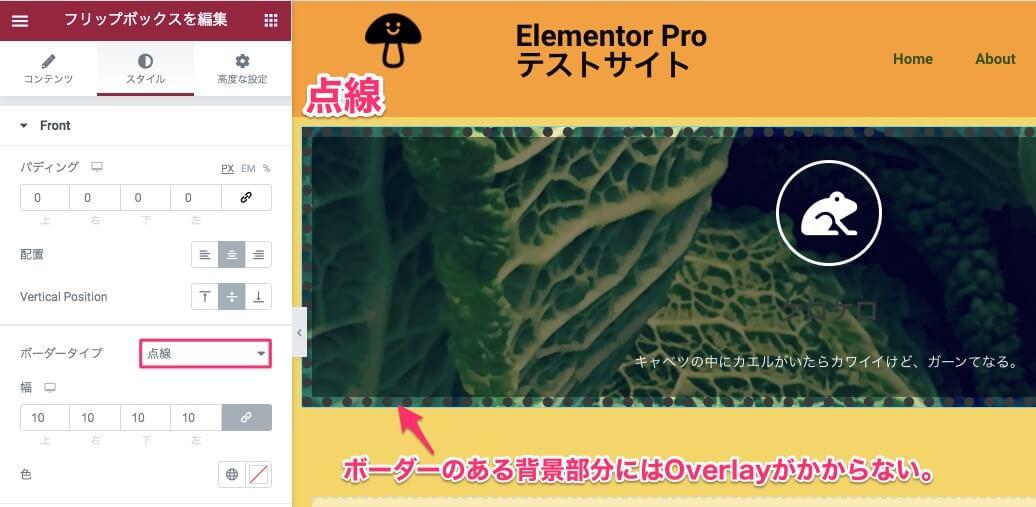 背景オーバーレイを入れ、ボーダータイプで点線を選択した時の表示画面