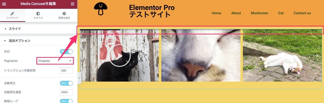 PaginationをProgressに設定した時の表示画面