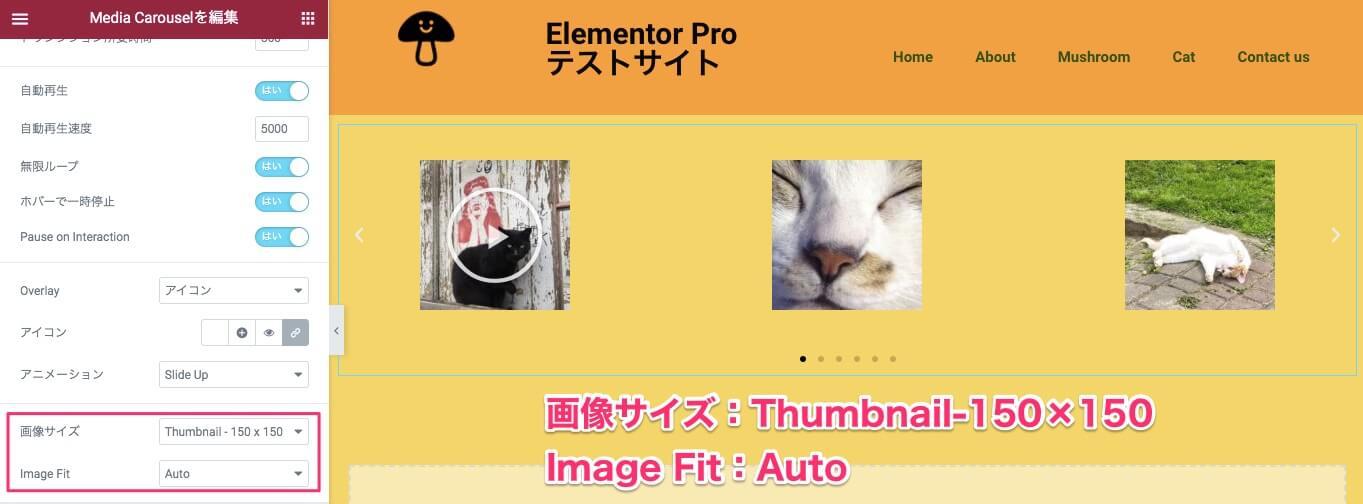 画像サイズ:Thumbnail-150×150 Image Fit:Auto に設定した時の表示画面