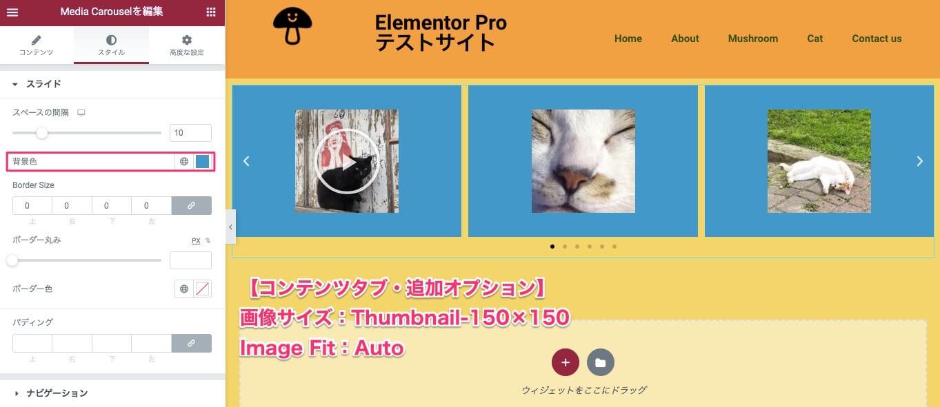 画像サイズ:Thumbnail Image Fit:Autoにし、背景色を変更した時の表示画面