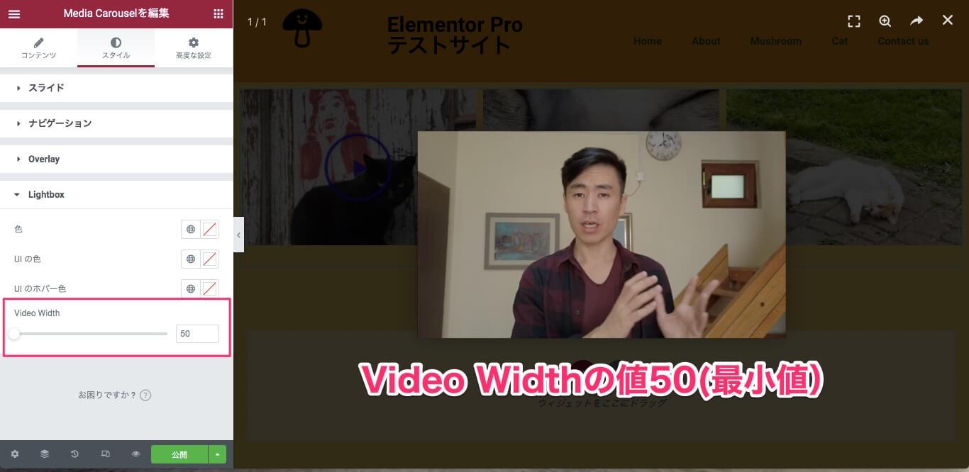 Video Widthの説明